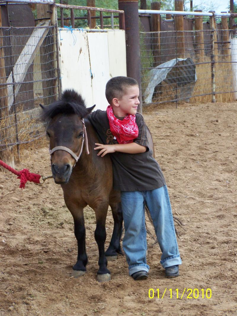 Steve, 6 yrs old, hanging with Mighty waiting for his turn to ride him.